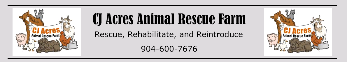 Image of CJ Acres Animal Rescue Farm Header.